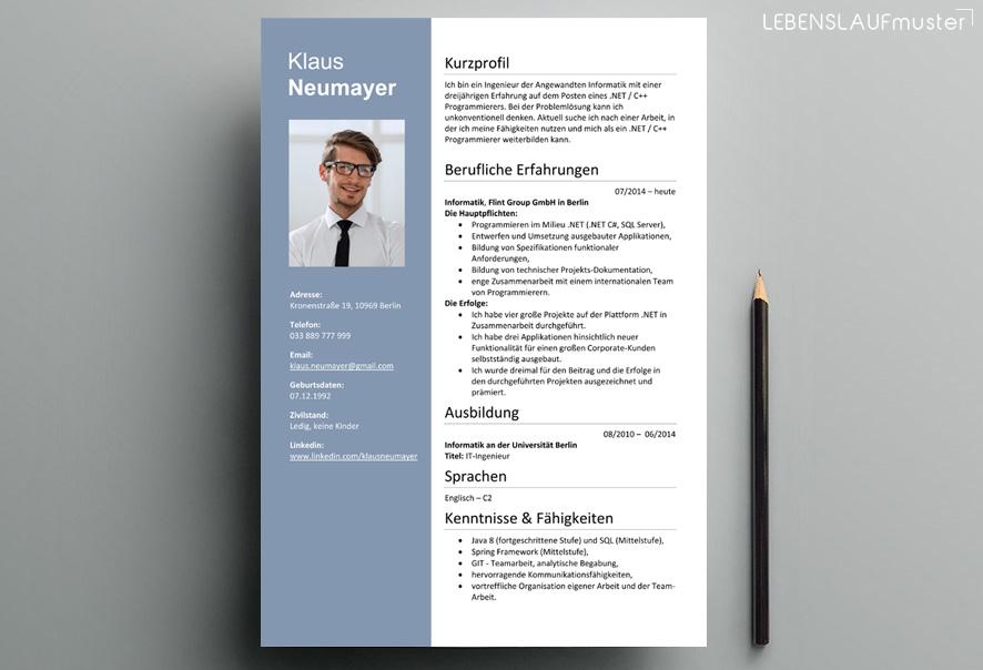 Lebenslauf Muster für Informatiker. Vorlage Word / Docx
